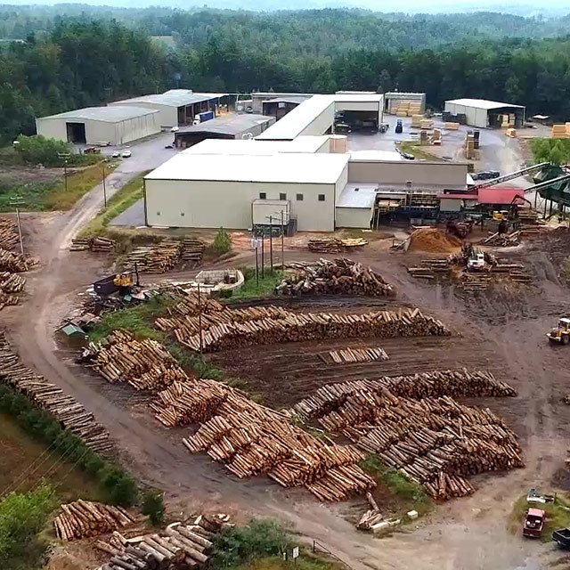 About Wholesale Wood Slabs | Wholesale Wood Slabs